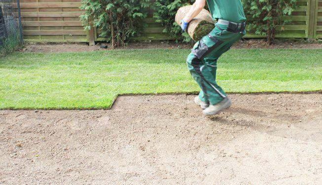 Gartenbau, es wird Rollrasen verlegt